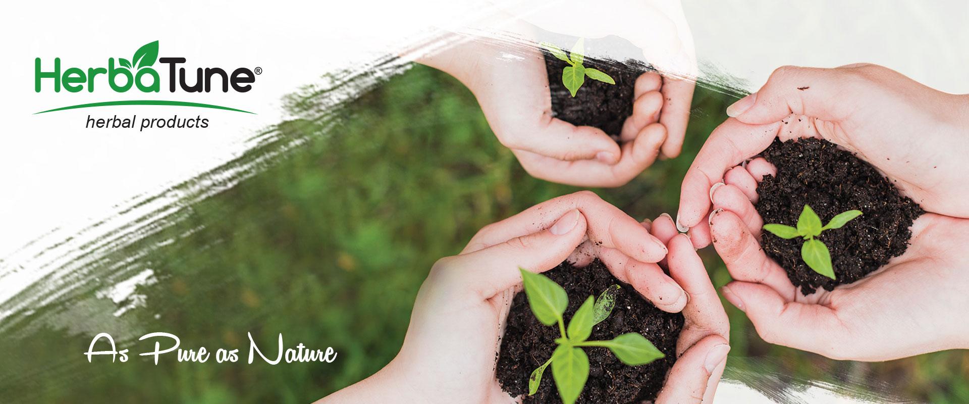 هرباتیون - گیاهان دارویی